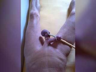 Lovolust's Body-&Sexizitätswerk-PornArt mit Deko-Bambus-Stock