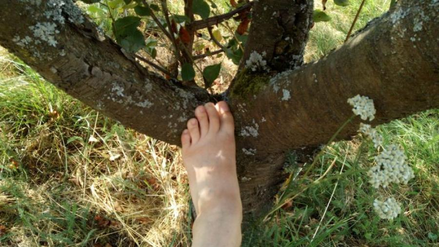 My feet outside in the garden and in nature